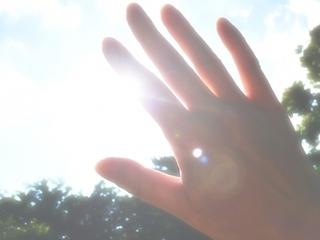 夏の日差し.jpg